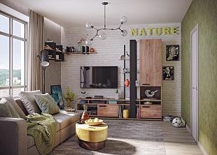Модульная гостиная «NATURE»